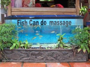 Fish massage - Siem Reap