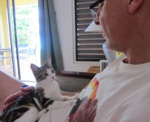 Visiting kitty, Antigua 1a
